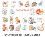 Stock photo collection set of watercolor cute forest animals illustrations hand drawn isolated on a white 535781866
