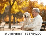 senior man and big dog sitting... | Shutterstock . vector #535784200