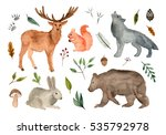 watercolor illustration forest... | Shutterstock . vector #535792978