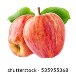 isolated apples. two red... | Shutterstock . vector #535955368