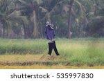 a scarecrow    in thailand  | Shutterstock . vector #535997830