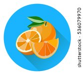 vector collection of fresh ripe ... | Shutterstock .eps vector #536079970