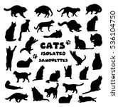 Stock photo collection of cats silhouettes isolated on white 536104750