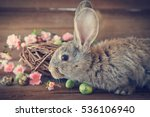 easter bunny  with easter eggs... | Shutterstock . vector #536106940