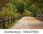 Autumn Leaves On Blackstone...