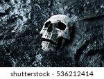 ancient human skull. apocalypse ... | Shutterstock . vector #536212414