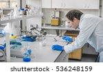 male laboratory researcher... | Shutterstock . vector #536248159