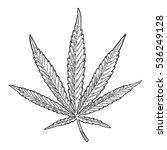 marijuana leaf. hand drawn... | Shutterstock .eps vector #536249128