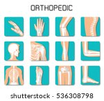 orthopedic and spine icon set... | Shutterstock .eps vector #536308798
