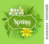 spring green leaves and flowers.... | Shutterstock .eps vector #536510608