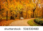 Autumn Park Bench Under Autumn...