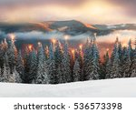 after the storm a strong frost... | Shutterstock . vector #536573398