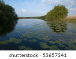 water landscape with water...   Shutterstock . vector #53657341
