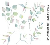 watercolor leaves collection.... | Shutterstock . vector #536594419