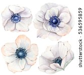 Stock photo handpainted watercolor flowers set in vintage style it s perfect for greeting cards wedding 536595859