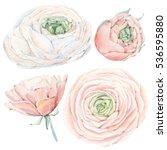 handpainted watercolor flowers... | Shutterstock . vector #536595880
