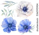 handpainted watercolor flowers... | Shutterstock . vector #536595904