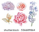 set with flowers. rose. lily.... | Shutterstock . vector #536689864