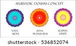 ayurvedic doshas icons. vata ... | Shutterstock . vector #536852074
