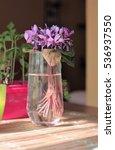 flowers in the glass   Shutterstock . vector #536937550