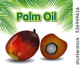Palm Oil Fruits With Palm...