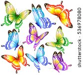 color butterflies isolated on a ... | Shutterstock .eps vector #536978080