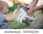 portrait of a little girl with... | Shutterstock . vector #537032254