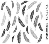vector black and white feather... | Shutterstock .eps vector #537116716