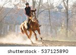 young pretty girl riding a horse | Shutterstock . vector #537125890