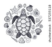 sea turtle and shells in line...   Shutterstock .eps vector #537255118