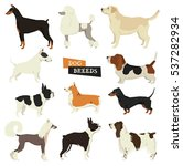 dog collection. geometric style.... | Shutterstock .eps vector #537282934