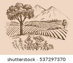 vector hand drawn mountain... | Shutterstock .eps vector #537297370