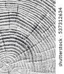 crack wood tree texture | Shutterstock . vector #537312634