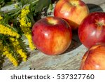 ripe apples and wild flowers on ... | Shutterstock . vector #537327760