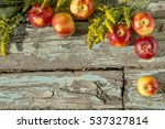 ripe apples and wild flowers on ... | Shutterstock . vector #537327814