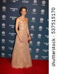Small photo of LOS ANGELES - DEC 15: Hilary Swank at the 21st Annual Huading Global Film Awards - Arrivals at The Theatre at The ACE Hotel on December 15, 2016 in Los Angeles, CA