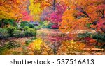 A Burst Of Fall Color With Pon...