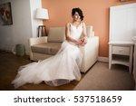 beauty brunette woman with...   Shutterstock . vector #537518659