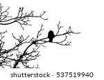 Lonely Crow Sitting On A Tree...
