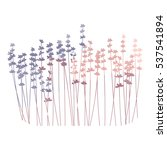 vector floral background with... | Shutterstock .eps vector #537541894