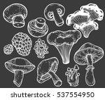 mushroom hand drawn sketch... | Shutterstock . vector #537554950