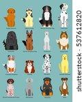 dog breed | Shutterstock .eps vector #537612820