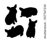 vector silhouette of pug dog. | Shutterstock .eps vector #537767233