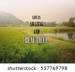 inspirational quote  ... | Shutterstock . vector #537769798