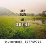 inspirational quote  ... | Shutterstock . vector #537769798