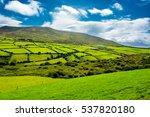 Rural Landscape With Pastures...