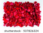 Stock photo background of red rose petals postcards wallpaper for design 537826324