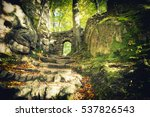 gate to the enchanted forest | Shutterstock . vector #537826543