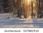 Beautiful Winter View With...