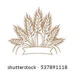 vector illustration of gold... | Shutterstock .eps vector #537891118